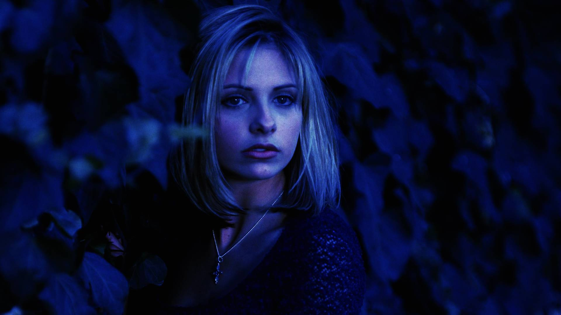 Free Download Buffy The Vampire Slayer Buffy The Vampire Slayer
