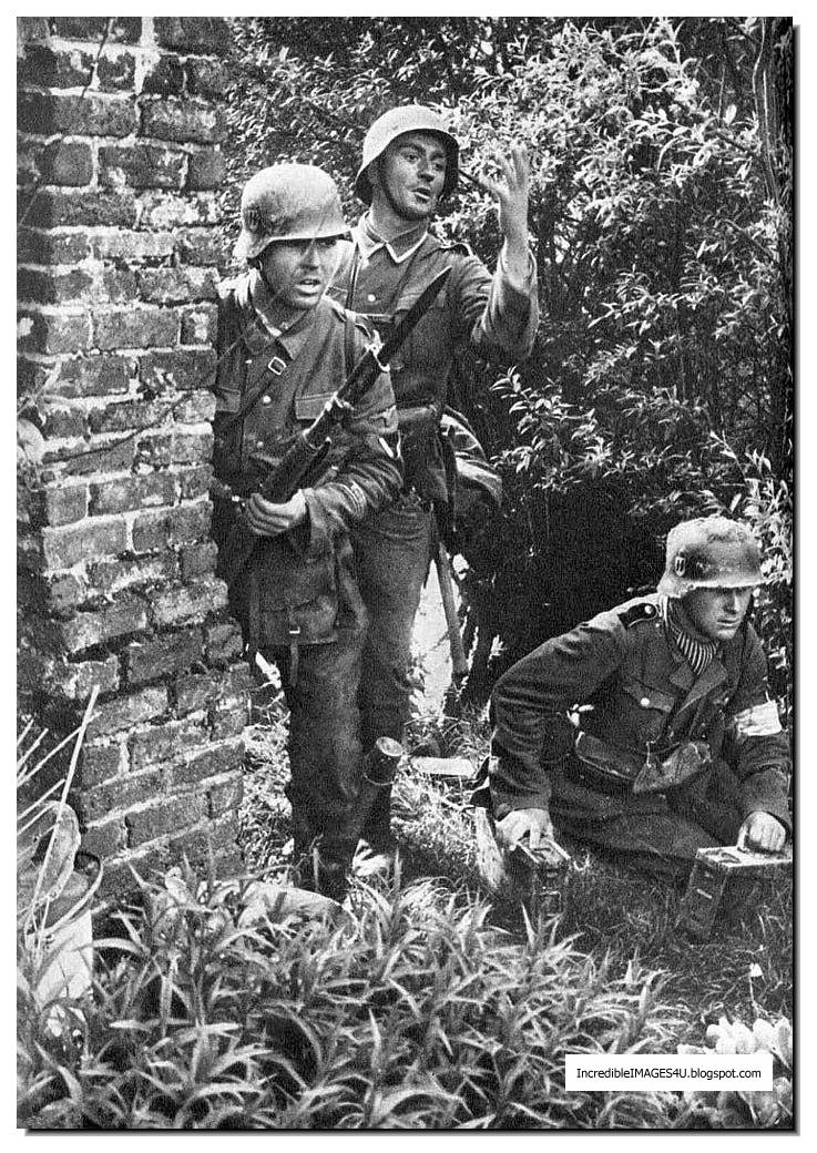 Waffen Ss Color Waffen ss in france 1940 part 737x1040