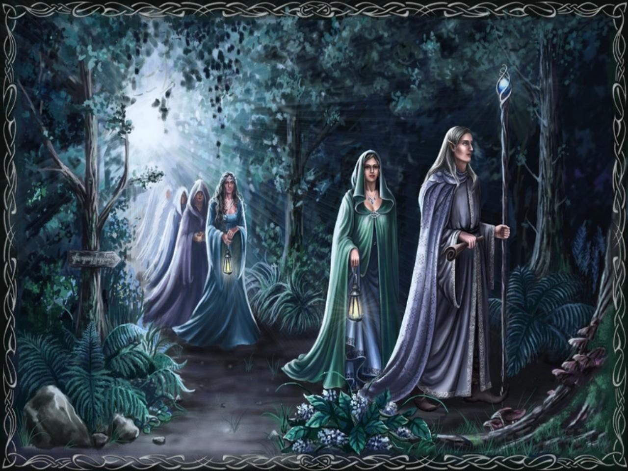 44 Elven Forest Wallpaper On Wallpapersafari