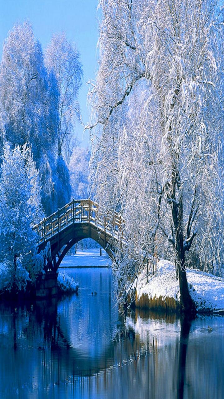 Wallpaper iphone winter - Winter Iphone Wallpaper Winter