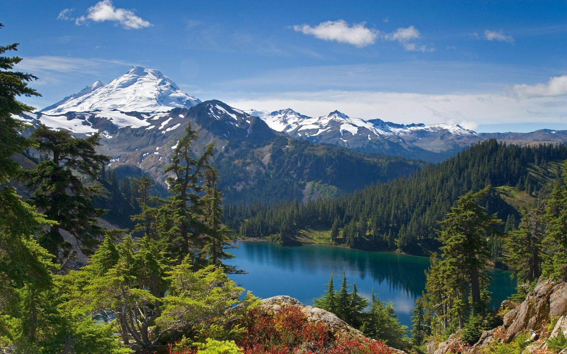 Lake Mountain Forest Desktop Wallpapers And Backgrounds Imgstocks 1920x1200