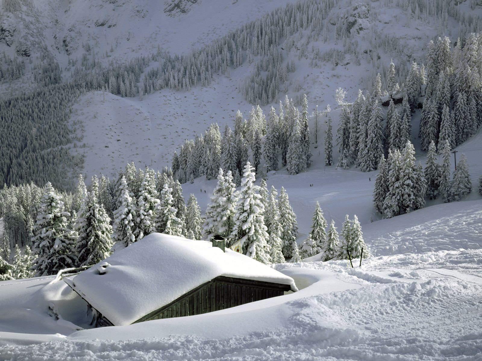 Download Nature Wallpaper wallpaper Snow Roof 1600x1200