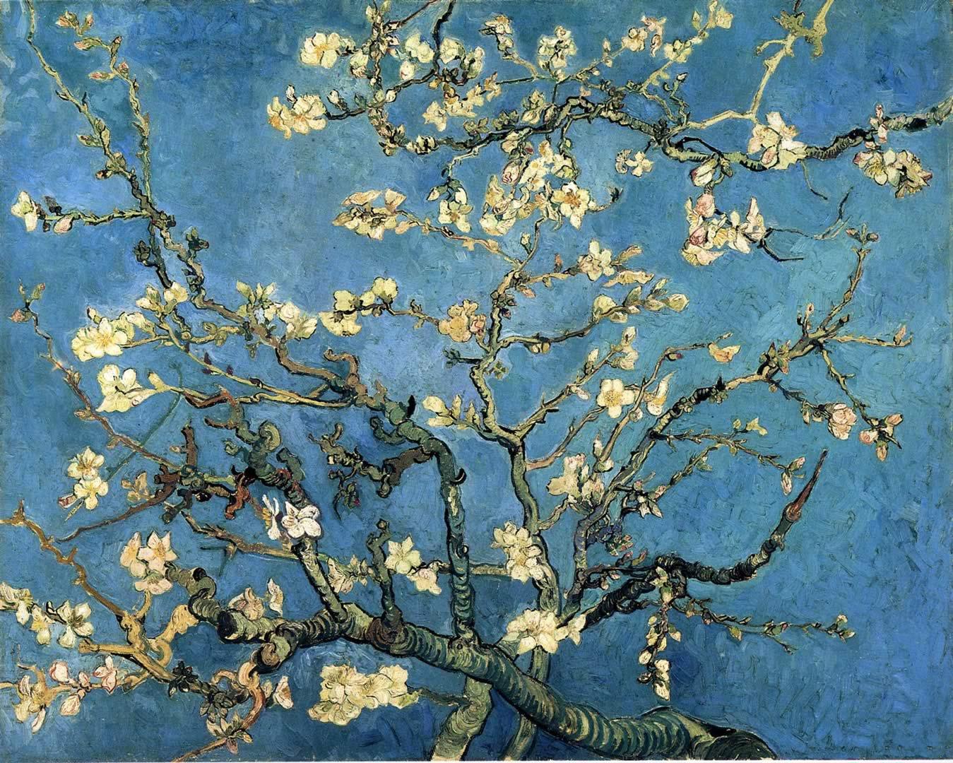 Blossom   A post impressionist vincent van gogh art wallpaper picture 1349x1080