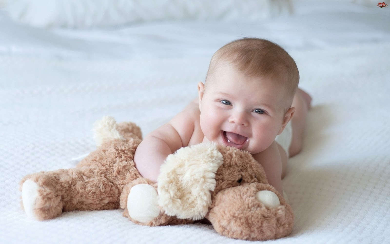 Baby Boy Wallpapers For Mobile The Art Mad Wallpapers 1600x1000