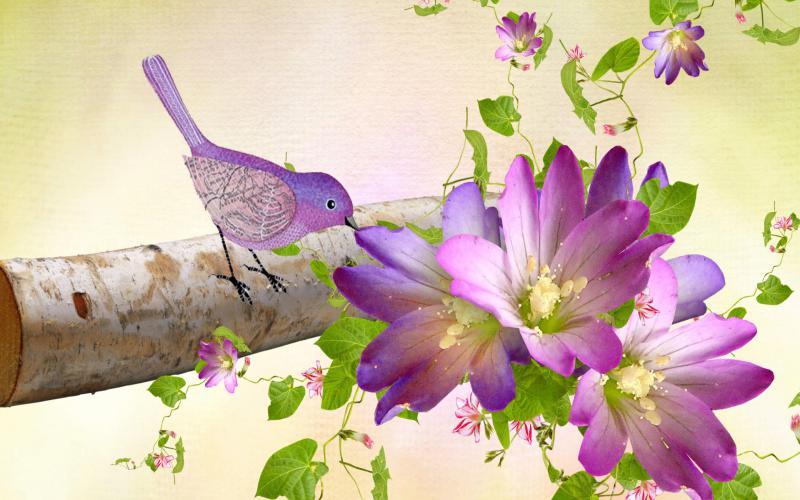 persona purple birch summer bird flowers pink floral log 3d abstract 800x500