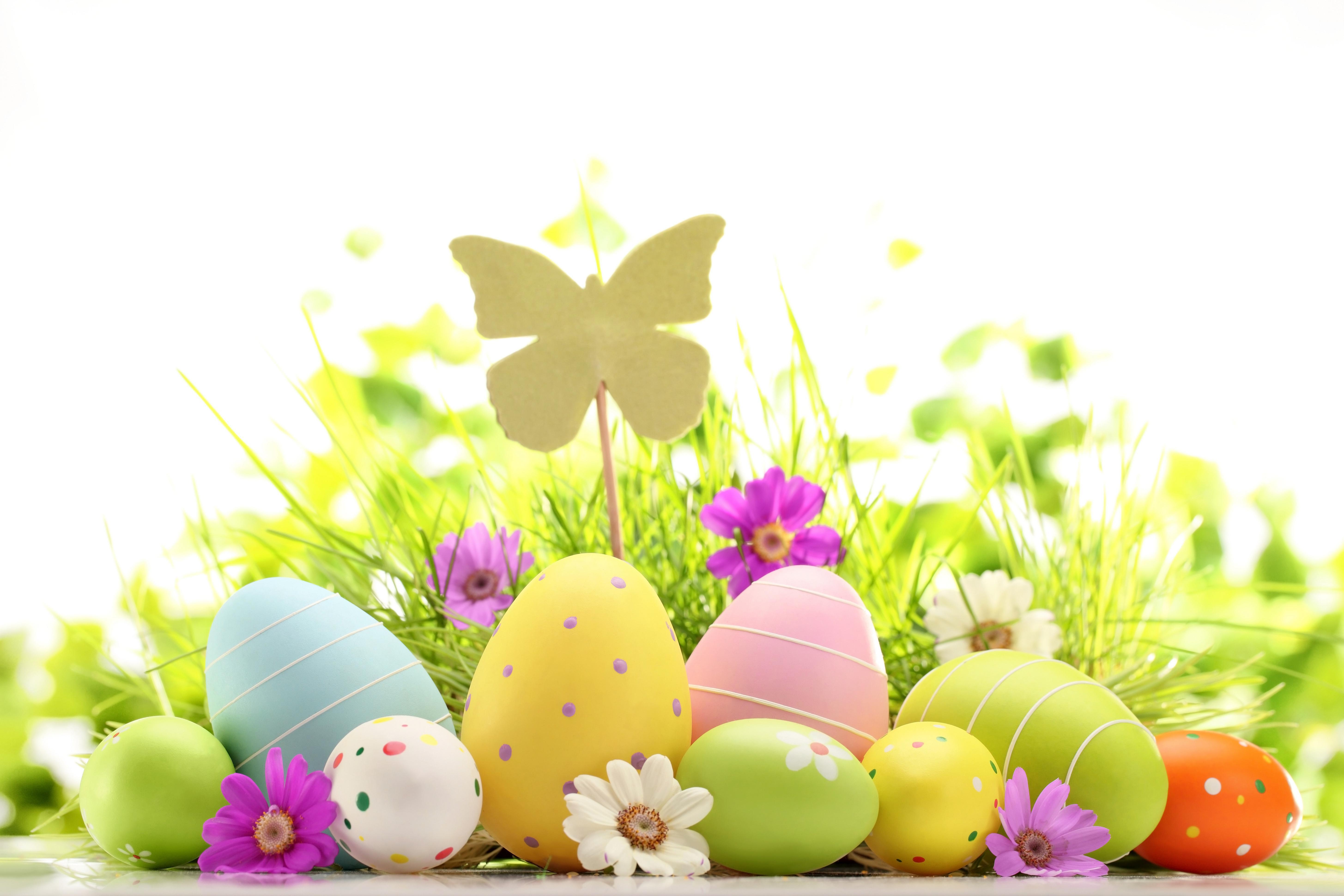 Easter Wallpaper 5   5820 X 3880 stmednet 5820x3880