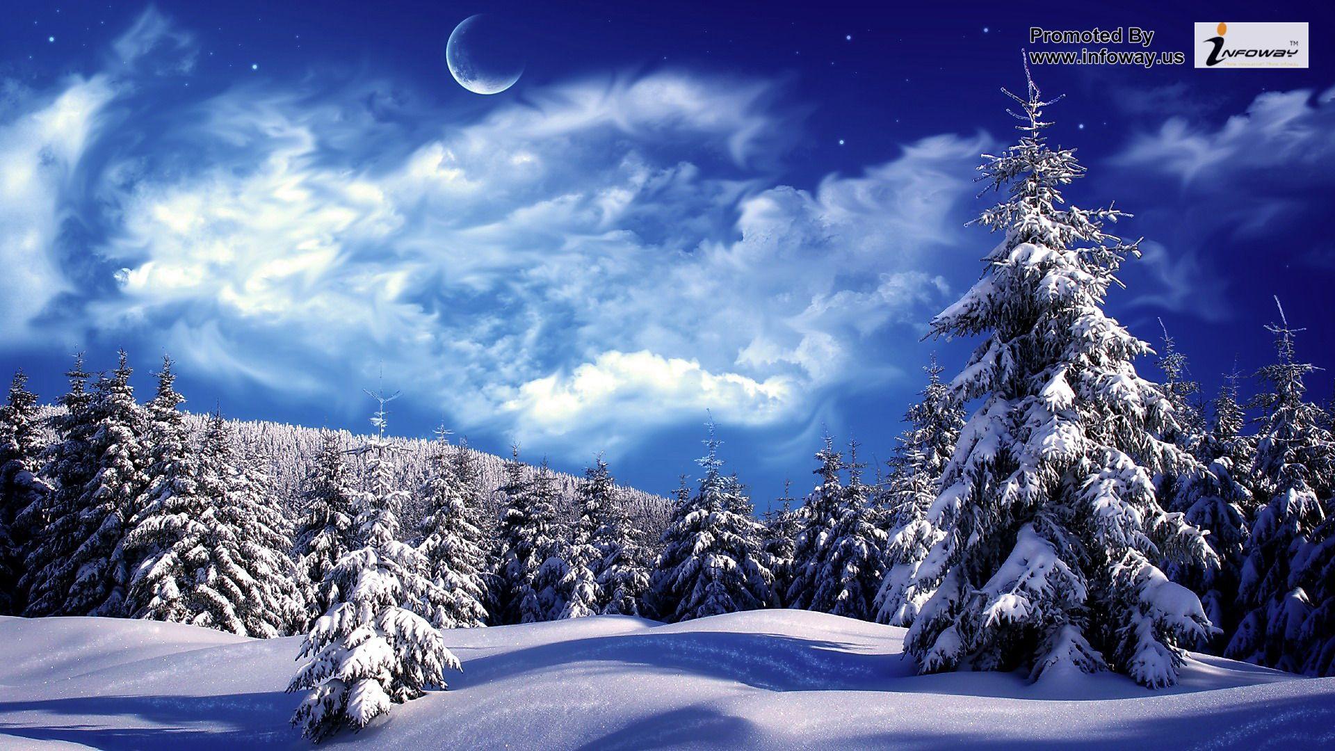 hd wallpapers snowy wonderland mountain scene sky snow trees 1920x1080 1920x1080
