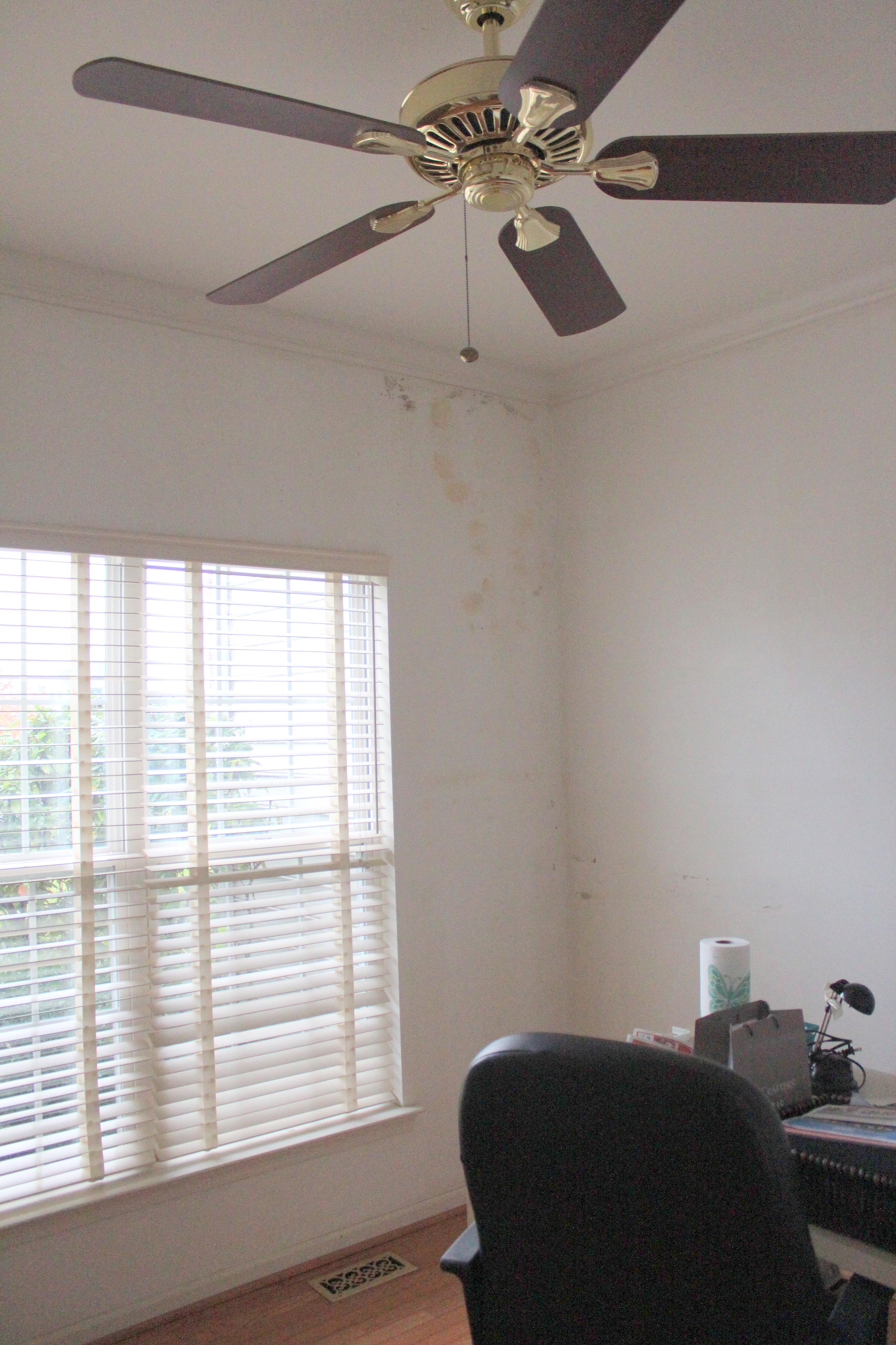 how to get old wallpaper off walls   weddingdressincom 3456x5184