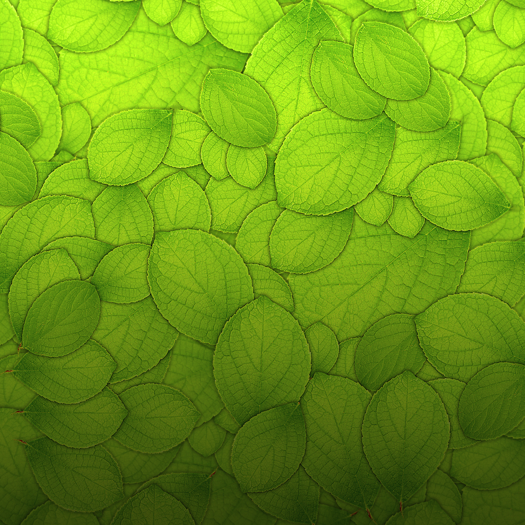 mrforscreen   green leaves texture ipad wallpaper 1024x1024