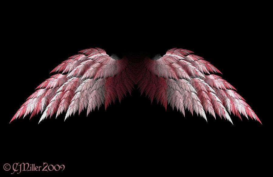 Purple Angel Wings Wallpaper Spread pink angel wings by 900x582
