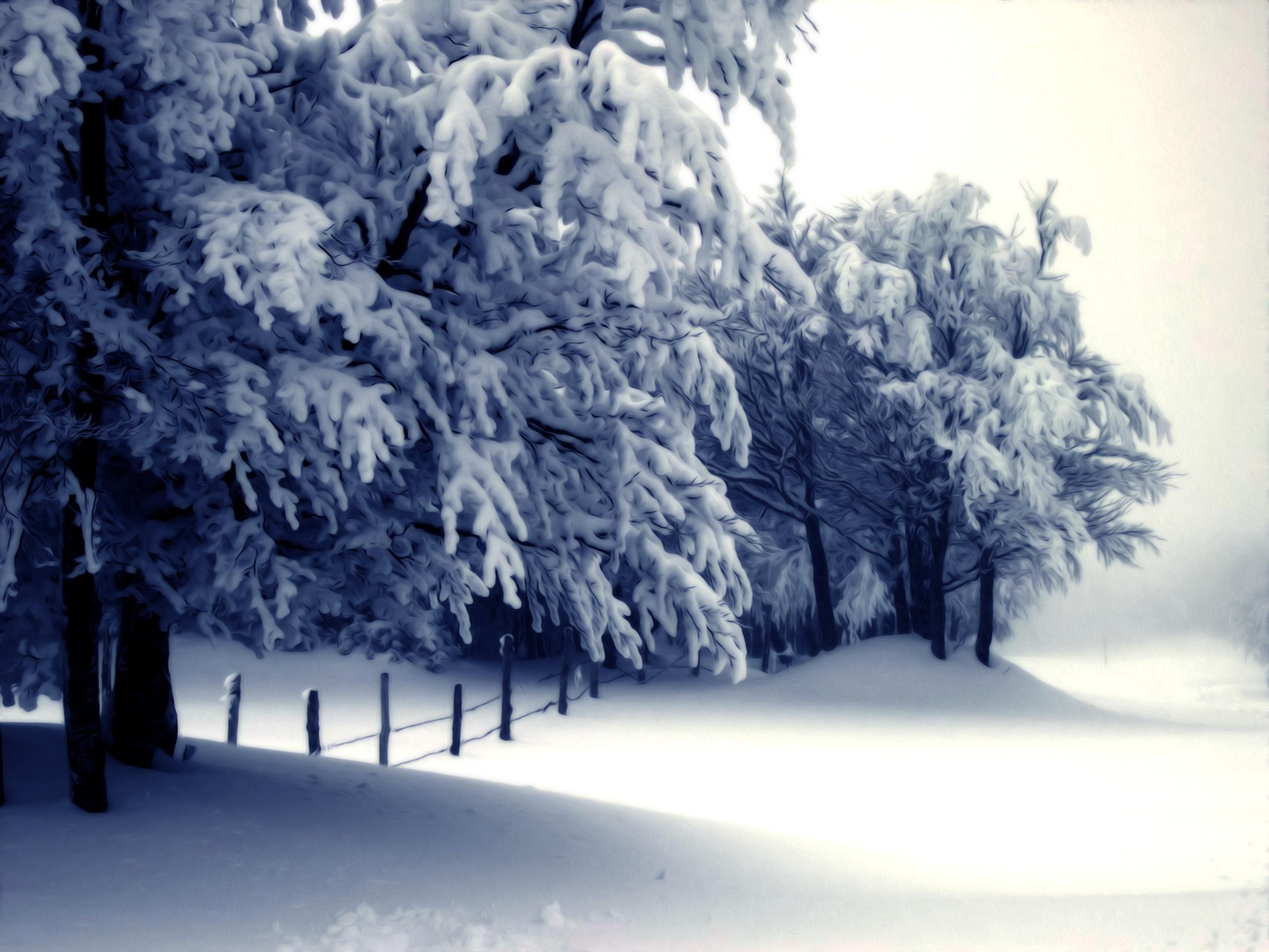 Snow Scenery Wallpaper 2560x1920