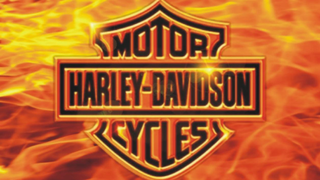 Harley davidson desktop wallpapers Funny and jokes pictures 1256x707