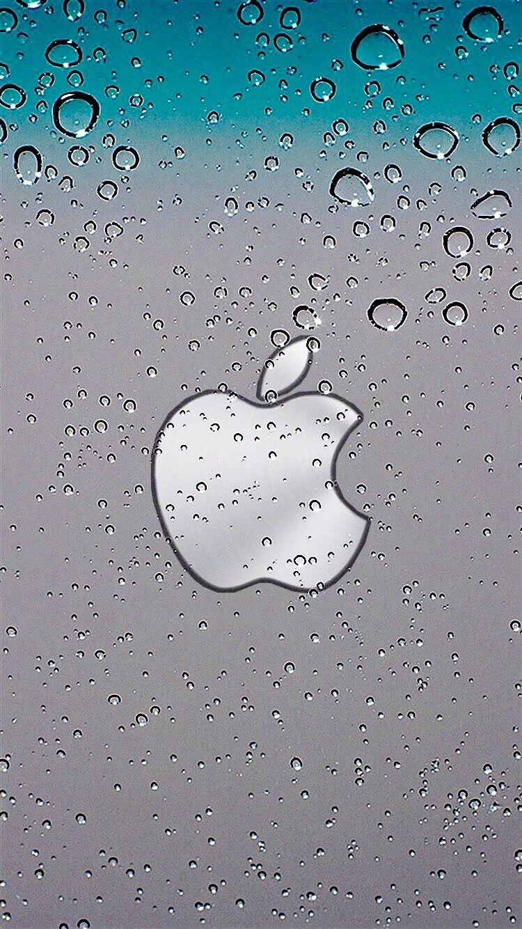 Clearwater Apple iApple in 2019 Apple wallpaper Apple 750x1334