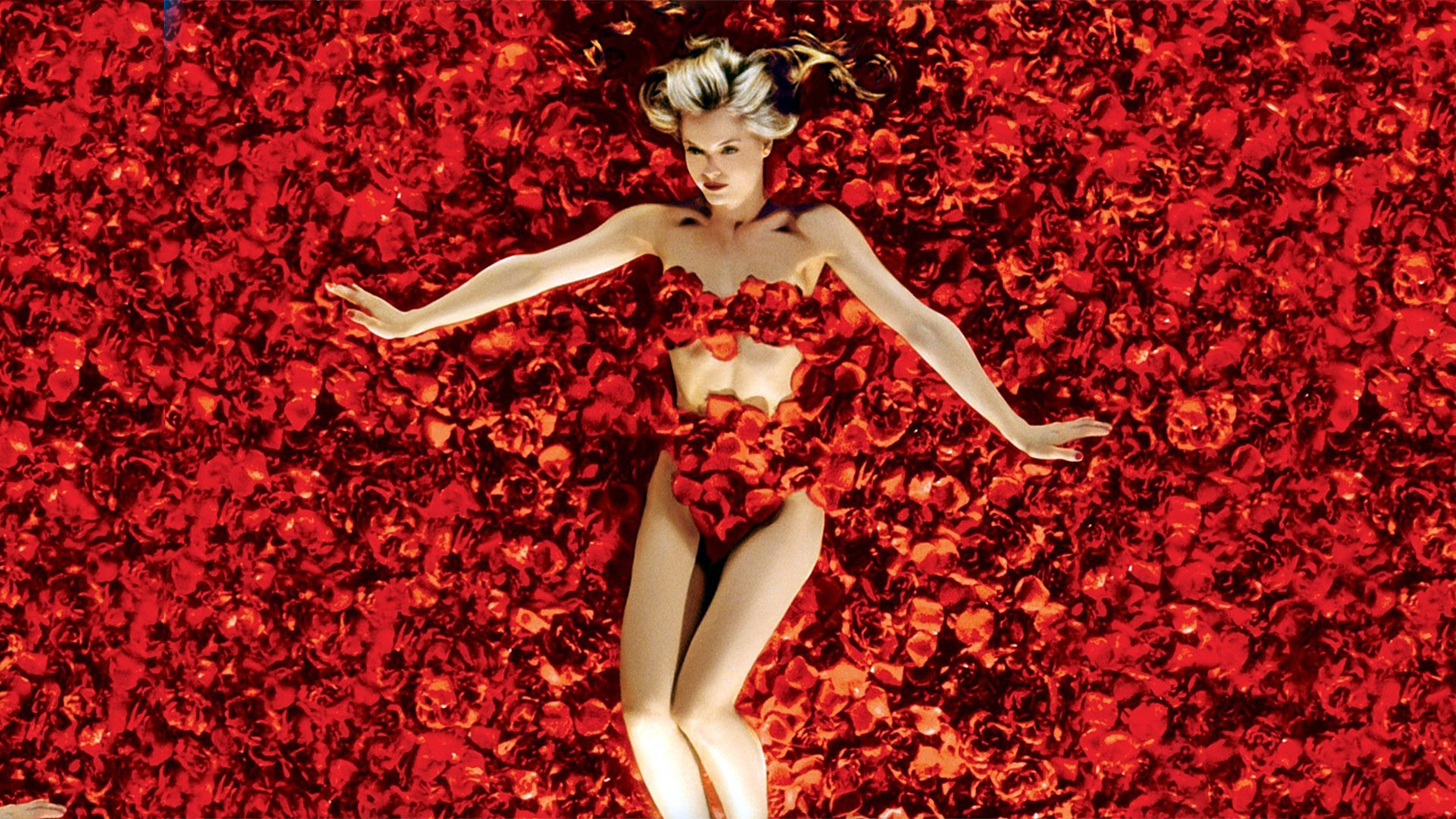 Amazing Background Wallpapers American Beauty High Resolution 3840x2160
