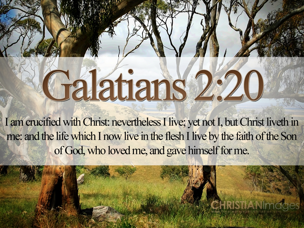 Christmas Cards 2012 Inspirational Bible Quotes Wallpapers 1024x768