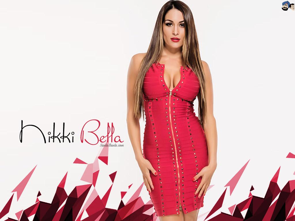 Free Download Nikki Bella Wallpaper 3 1024x768 For Your