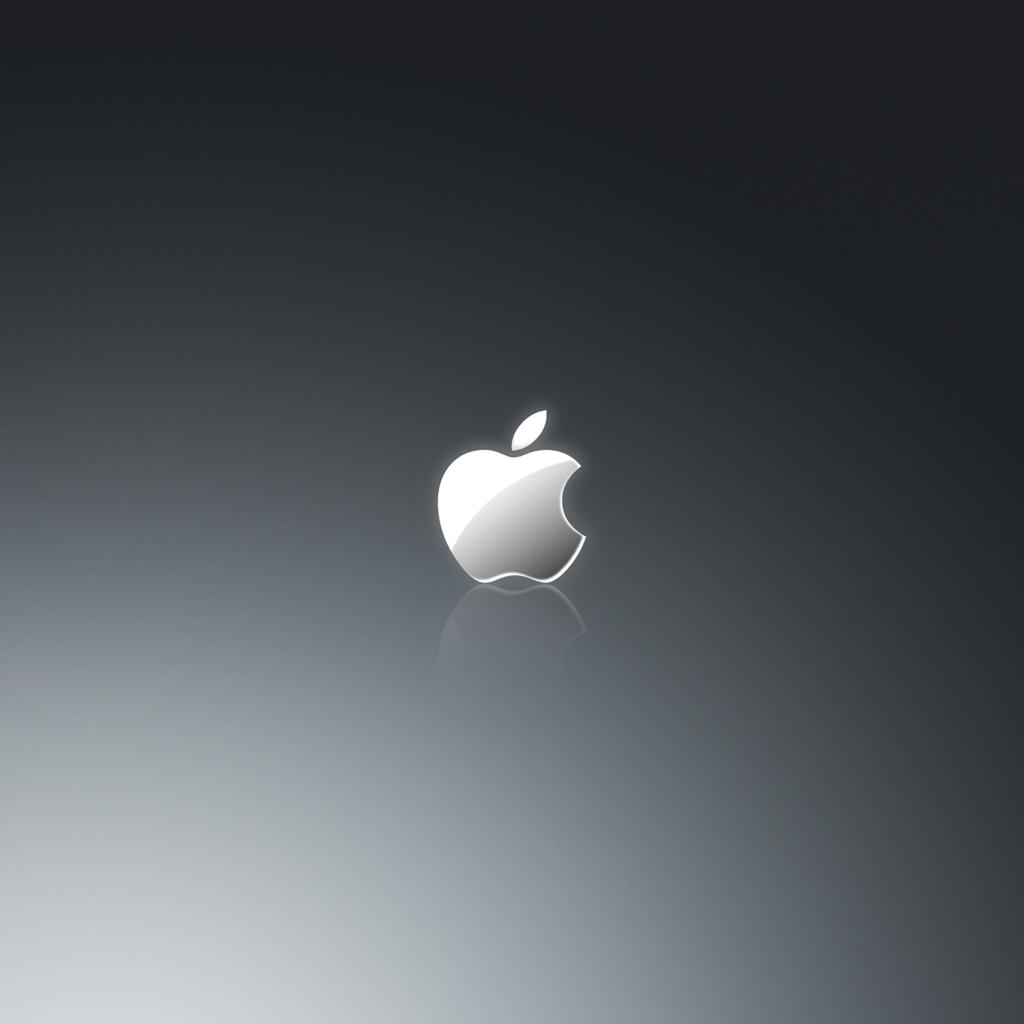 Grey Apple Logo iPad Wallpaper ipadflavacom 1024x1024