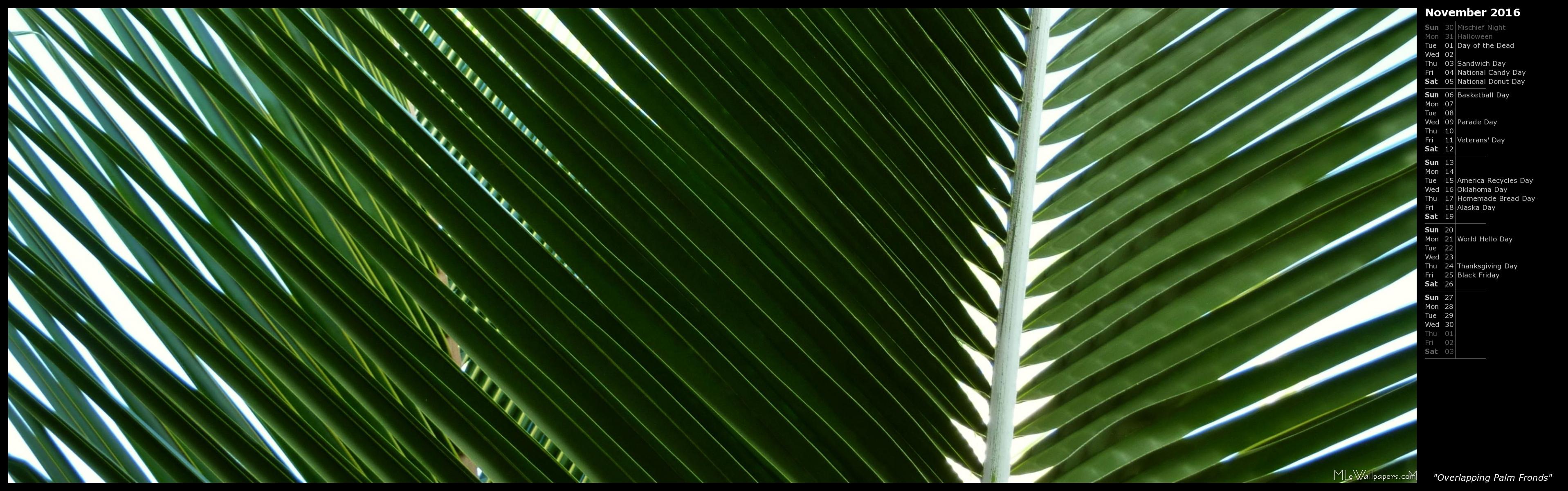 MLeWallpaperscom   Overlapping Palm Fronds Calendar 3834x1200