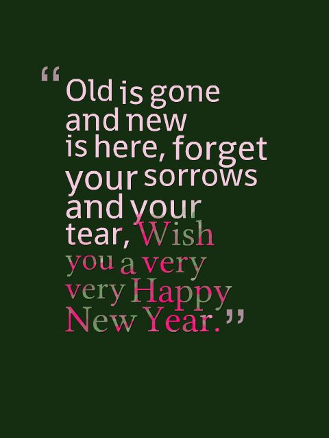 Quotes New Year 2015 QuotesGram 480x640