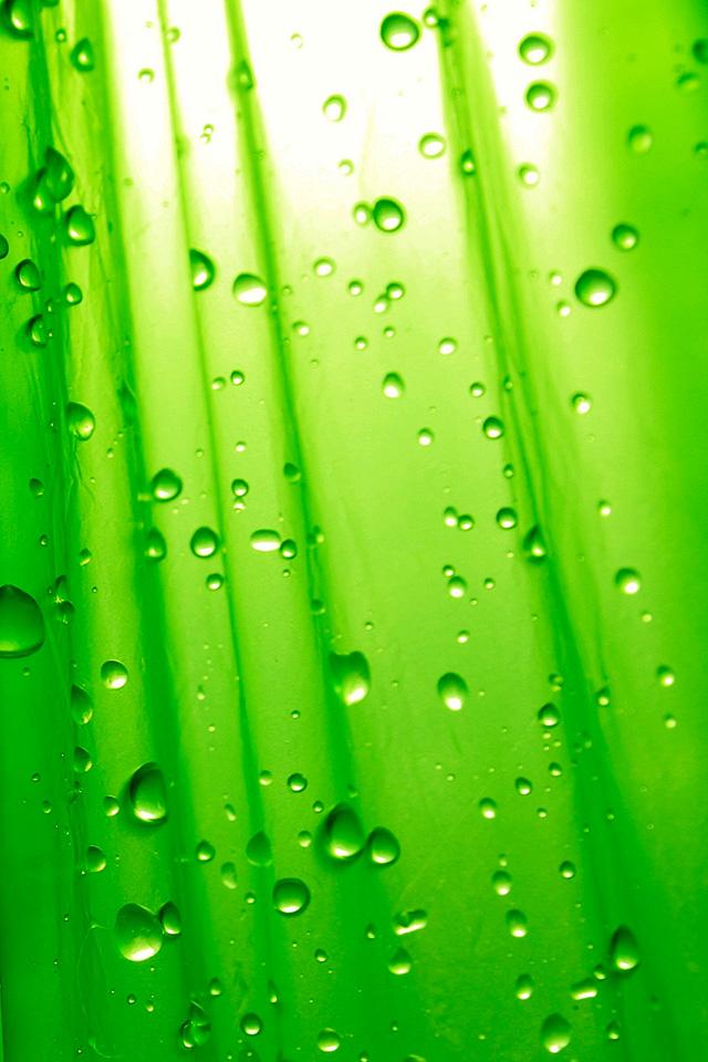 Mint Green Iphone Wallpaper Wallpapersafari