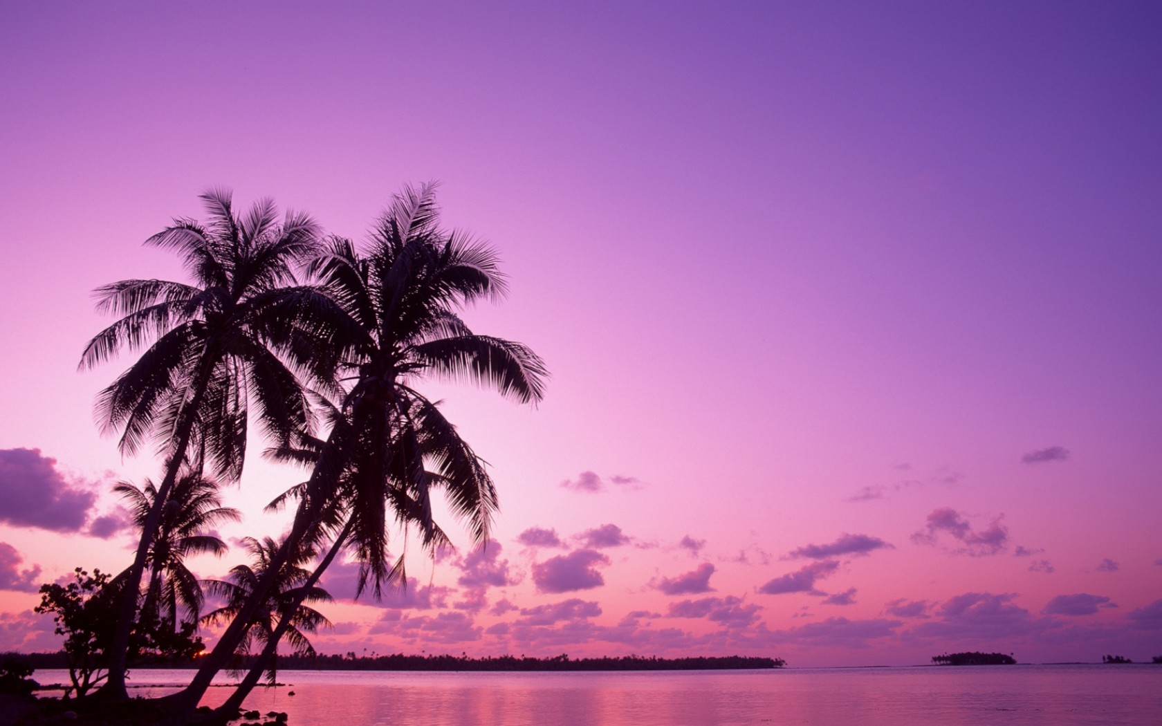 Pink Sunset Backgrounds HD wallpaper background 1680x1050