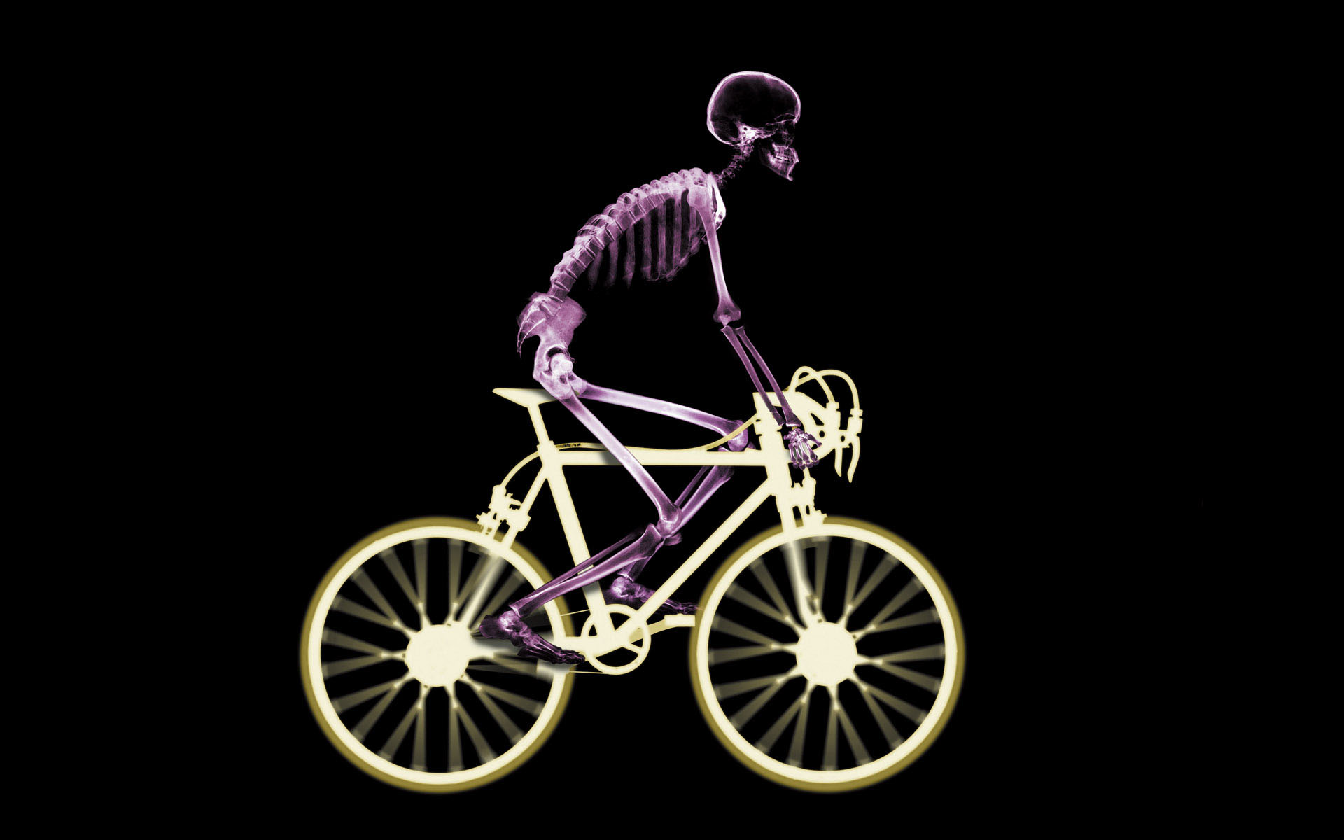 Cycling Wallpaper HD - WallpaperSafari