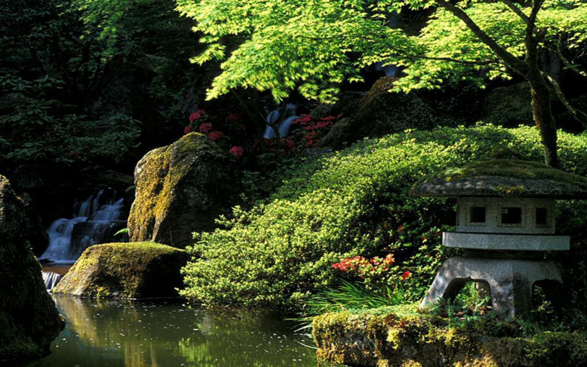 japanese garden desktop wallpaper wallpapersafari