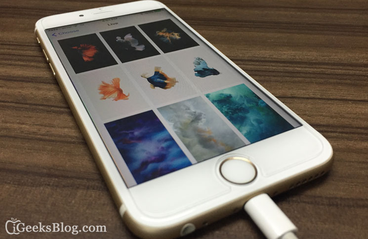 How to Set and Use Live Photos as Wallpapers on iPhone 6s6s Plus 745x483