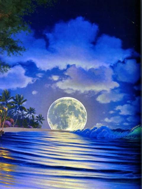 Ocean Moon 480x640 Screensaver wallpaper 480x640