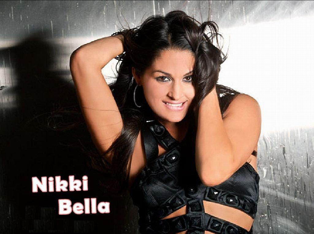 WALLPAPERS Nikki And Brie Bella gemelas   WALLPAPERS WWE TNA AAA 1024x765