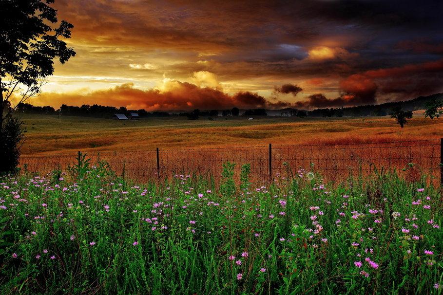 Country farm at sunset wallpaper   ForWallpapercom 909x606