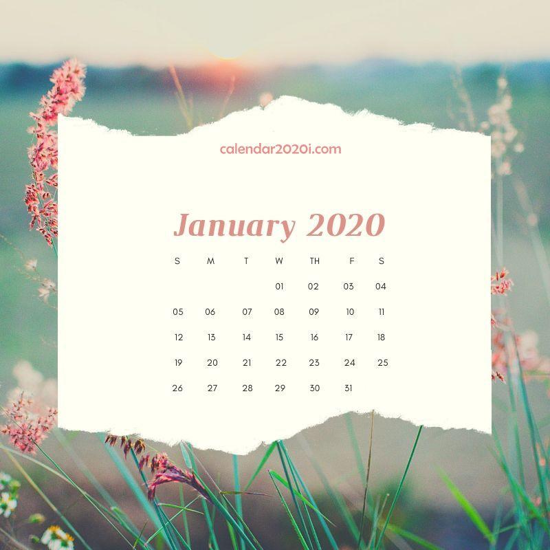 2020 Floral Printable Calendar Calendar 2020 800x800