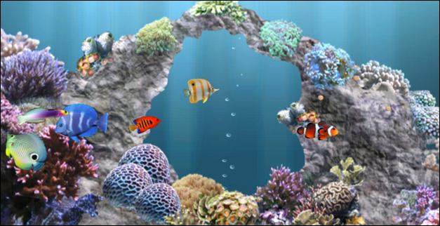 30 Live Wallpapers For Android In 2016: Live Aquarium Wallpapers For Windows 8.1