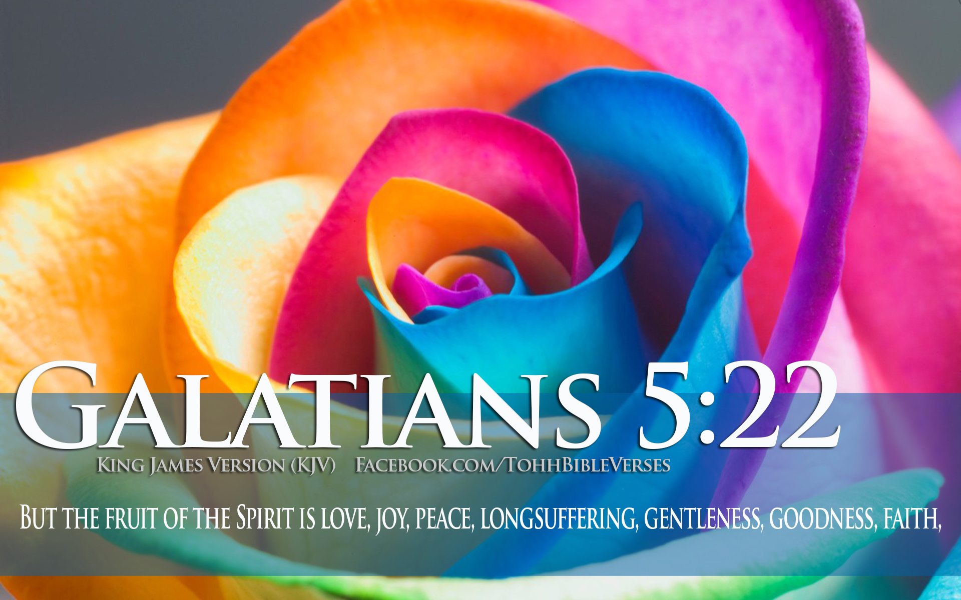 Fruit of the spirit Wallpaper   Christian Wallpapers and Backgrounds 1920x1200