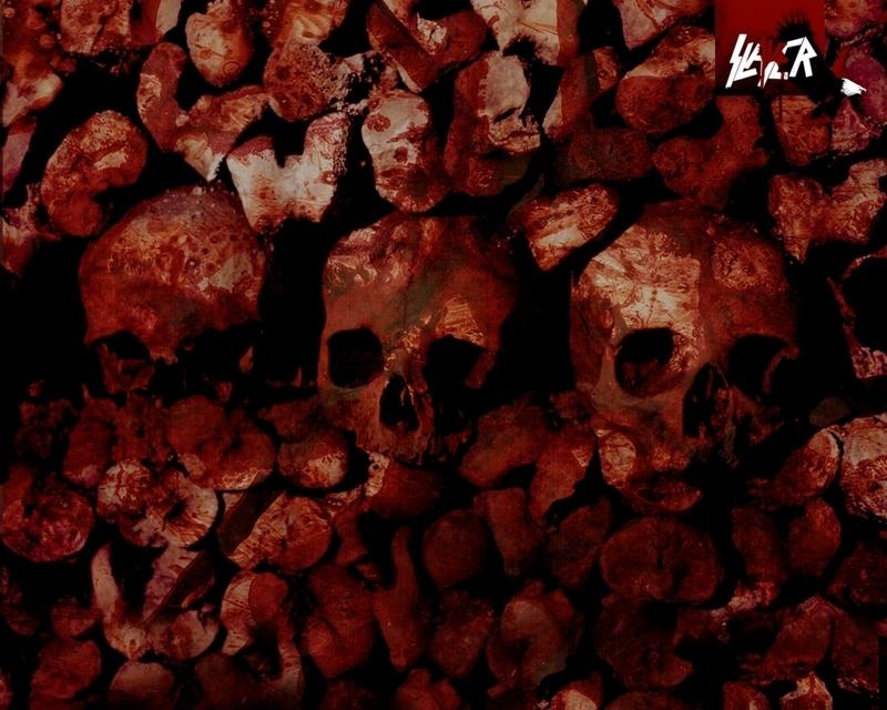 Slayer   Slayer Wallpaper 1631346 800x640
