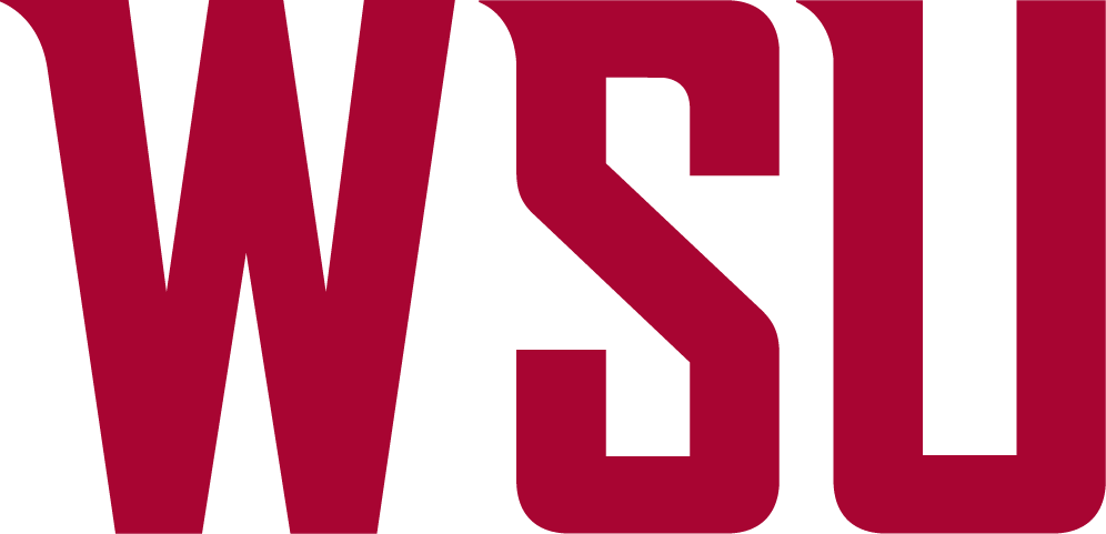 Washington State Cougars Wordmark Logo 2011 996x481