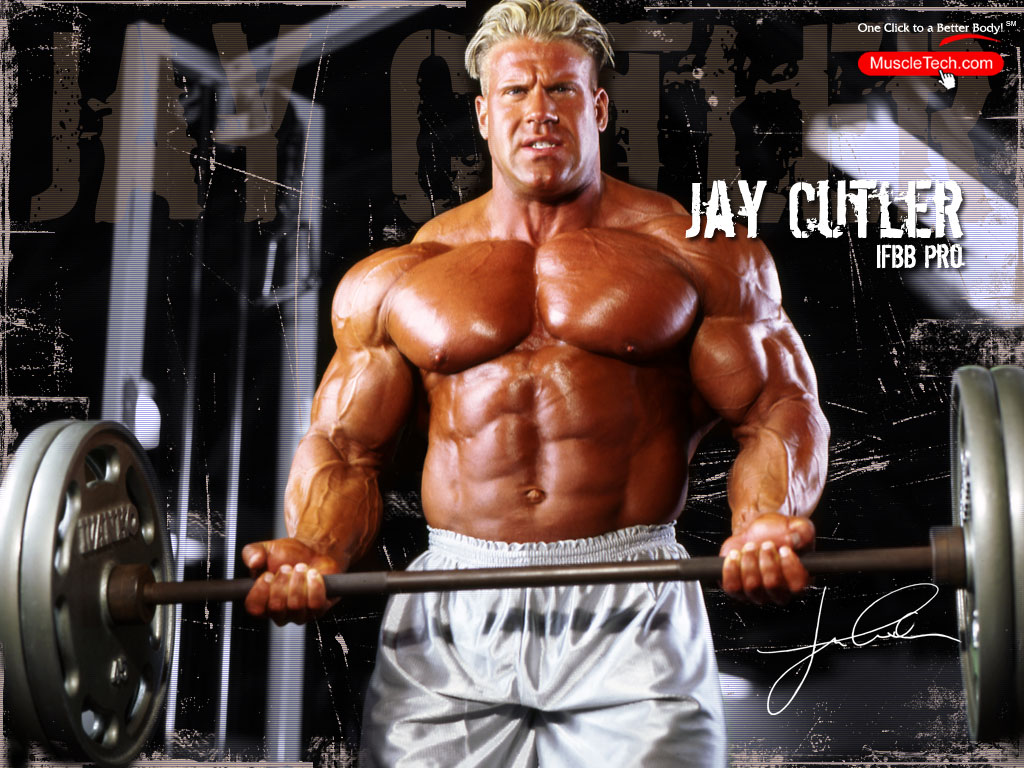 Mr Olympia IFBB 2002 2003 2004 Arnold Classic Champion and IFBB 1024x768