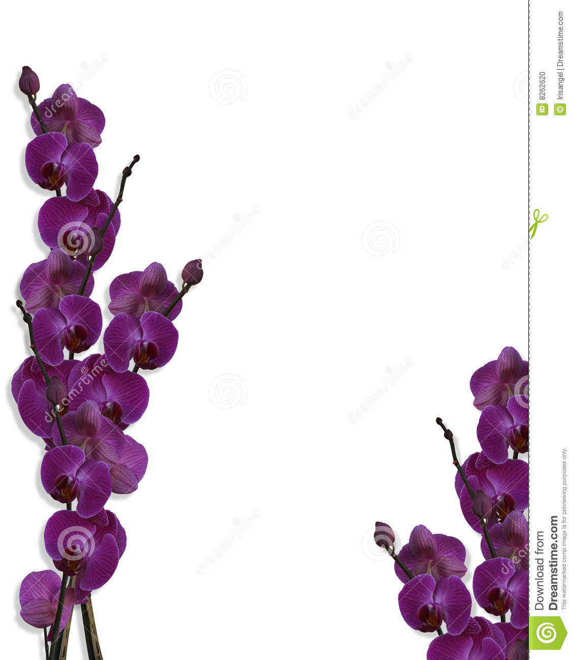 Free Download Purple Flower Wallpaper Border Weddingdressincom
