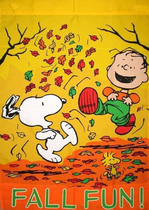 PEANUTS Peanuts Snoopy Pinterest 509x720