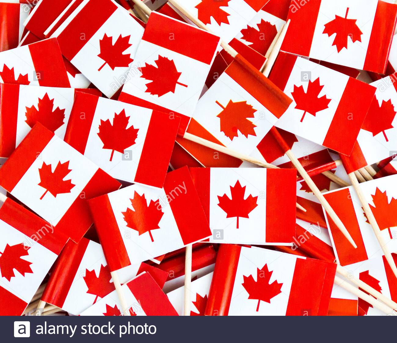 background wallpaper a jumble of small red and white Canadian 1300x1122