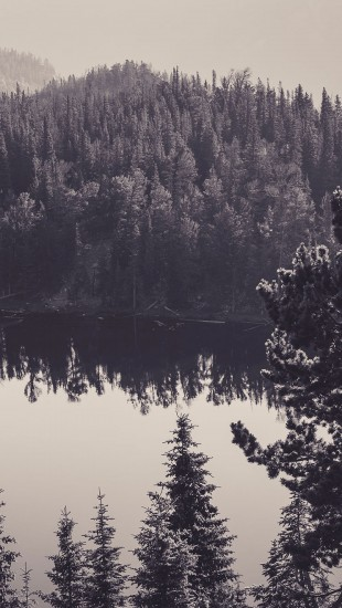 search canada lake black and white iphone wallpaper tags black canada 310x550