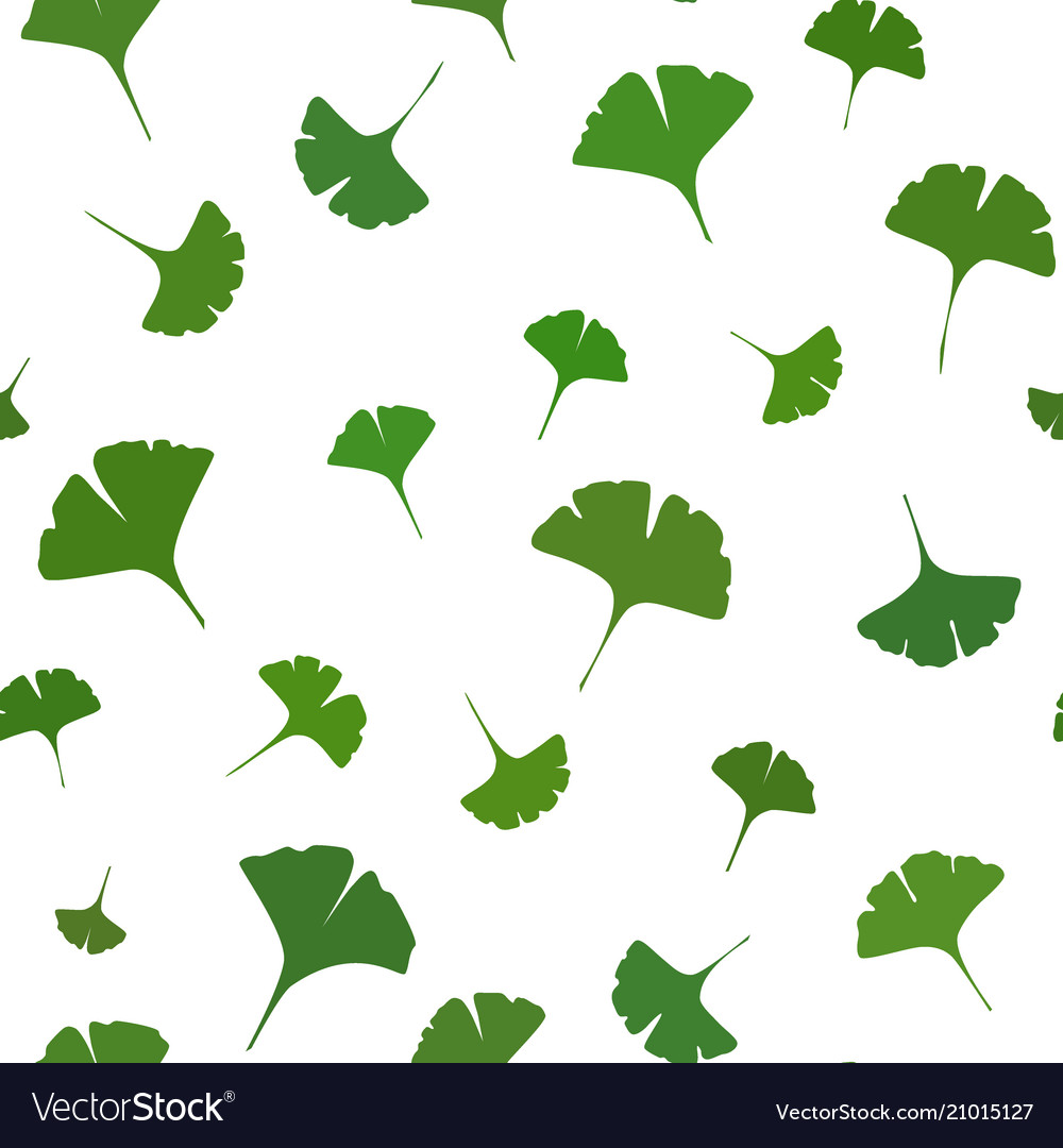 Ginkgo leaves seamless pattern on white background 1000x1080