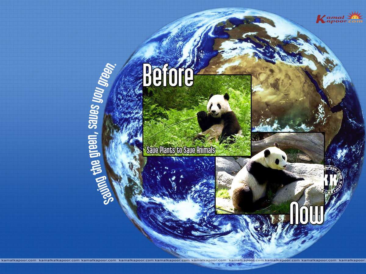 save my earth Wallpaers colored wallpapers Save Earth go green save 1200x900