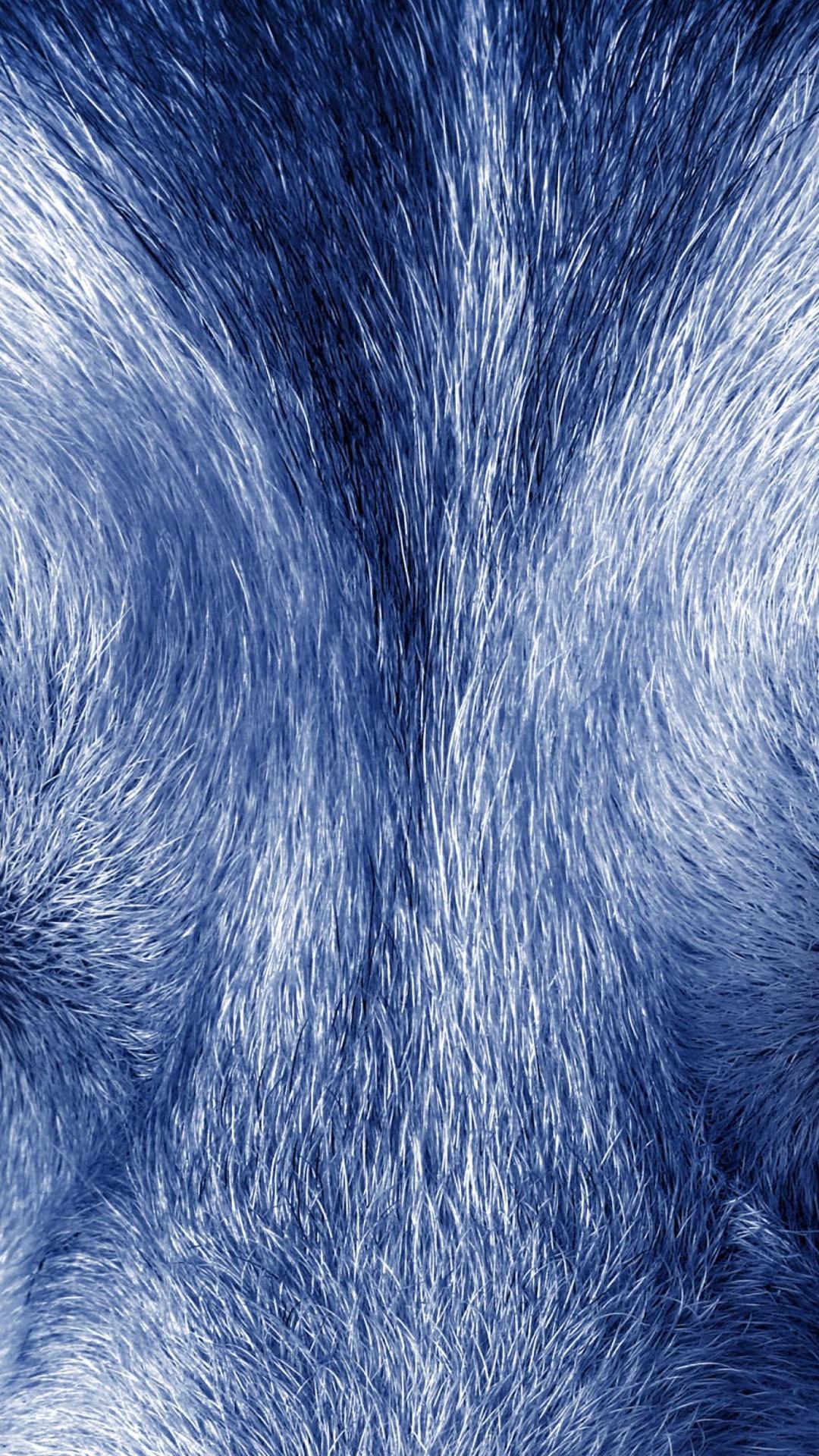 Soul of wolf 4K Ultra HD wallpaper 4k WallpaperNet 1080x1920