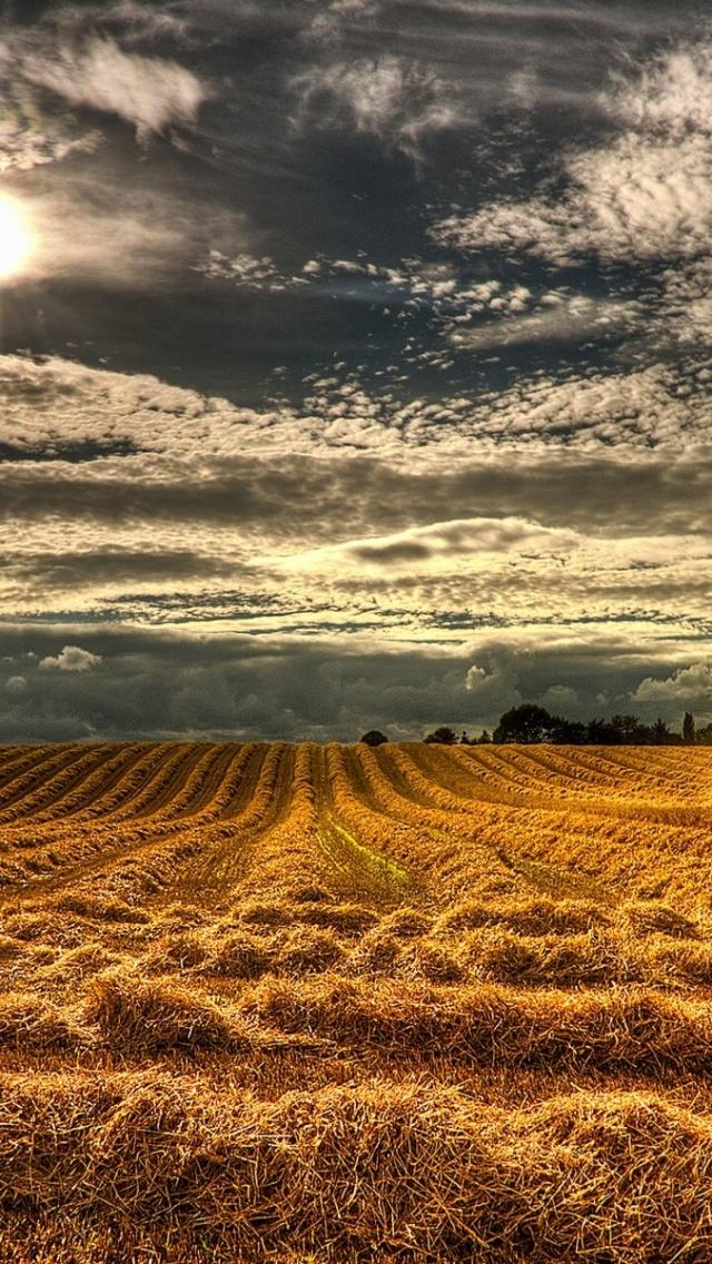 640x1136 Northern Ireland Harvest Iphone 5 wallpaper 640x1136