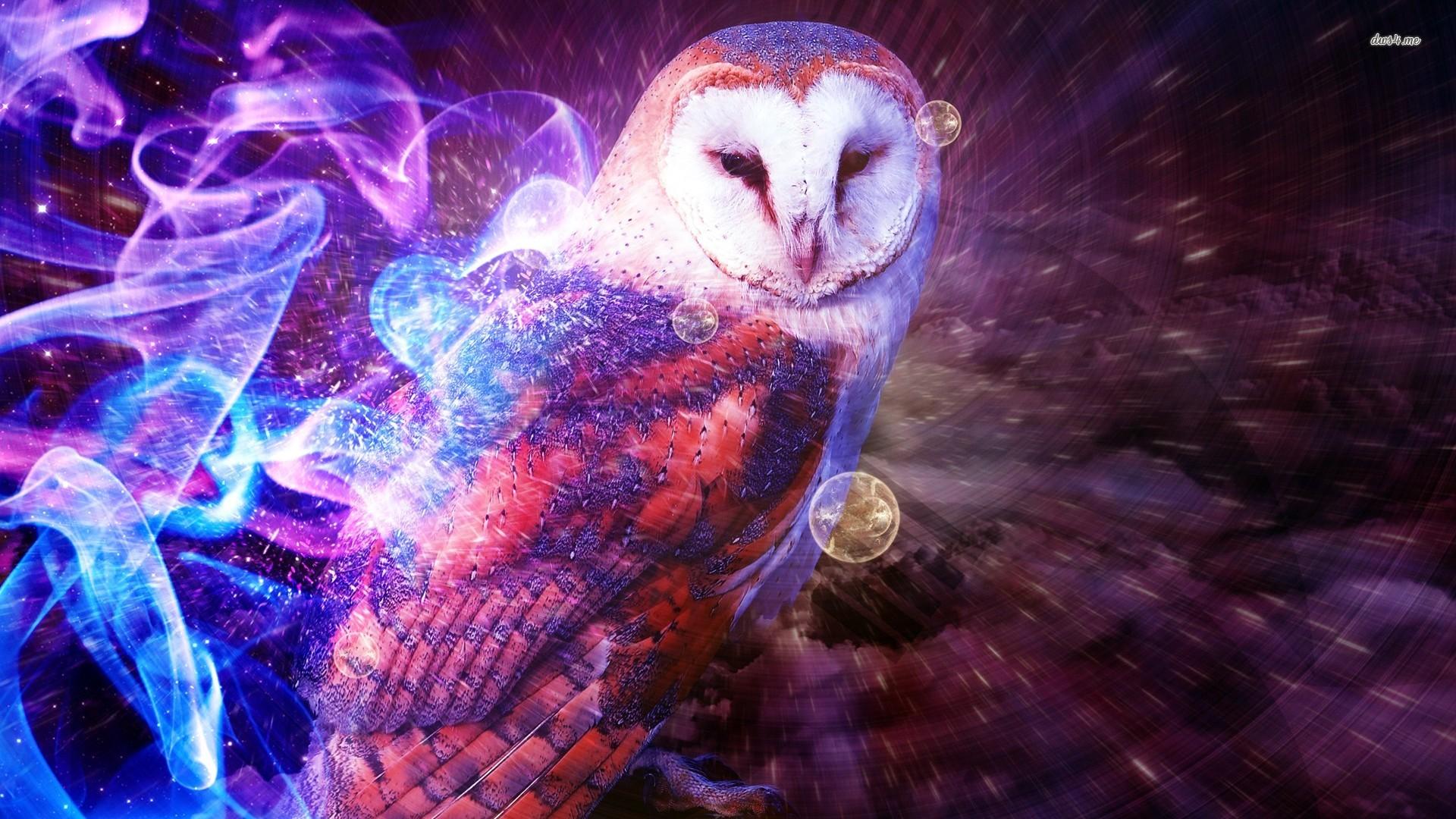Owl wallpaper   Digital Art wallpapers   8713 1920x1080