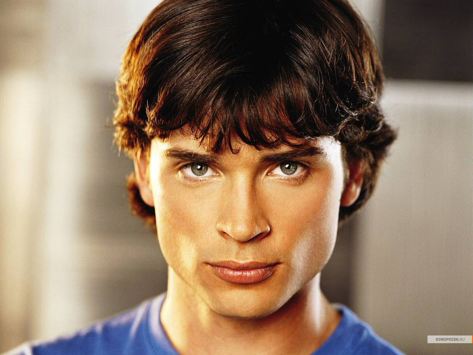 Tom Welling HD Wallpapers 1600x1200