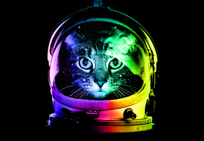 justpictcom Cat Astronaut Wallpaper 650x450