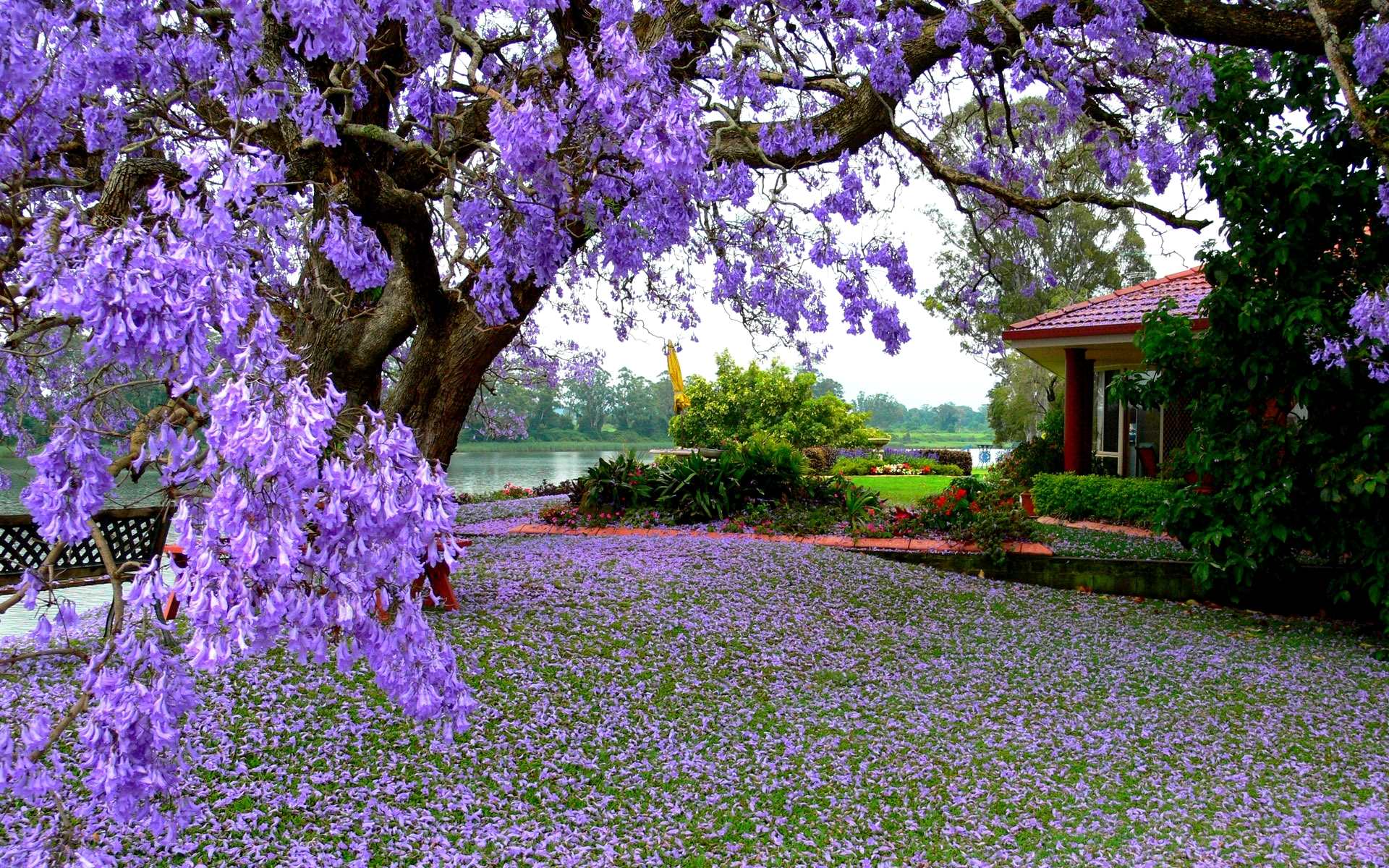 Spring Background Wallpapers WIN10 THEMES 1920x1200