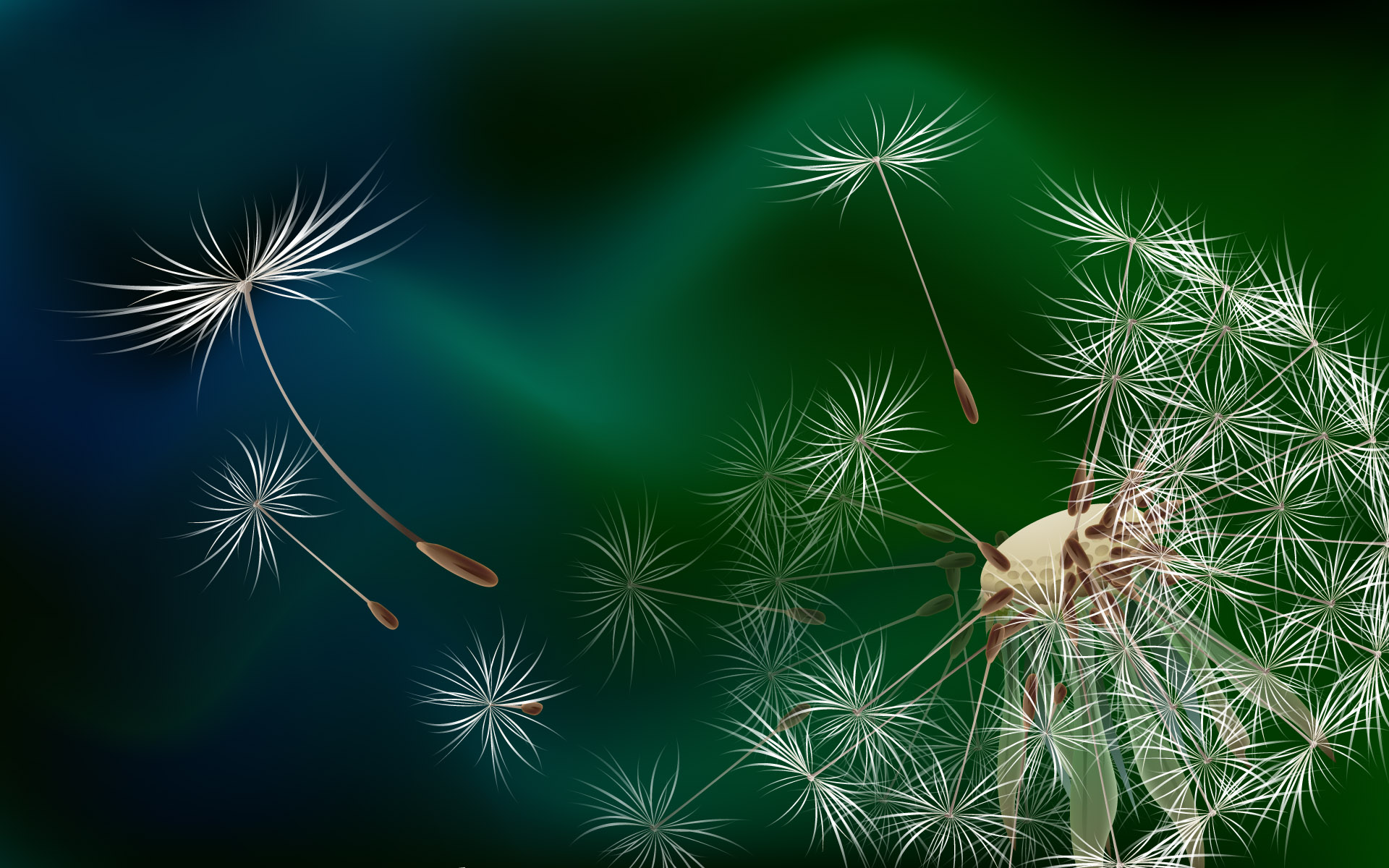 The seeds of a dandelion wallpapers and images   wallpapers pictures 1920x1200